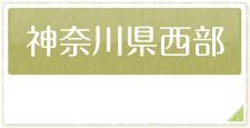 神奈川県で行われる婚活パーティーの情報はこちら
